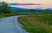 Distant Mount Baker In Pink Sunset Light