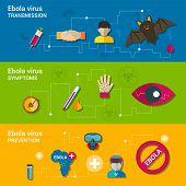 Ebola virus flat banners
