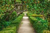 The Royal Palace Gardens, Aranjuez
