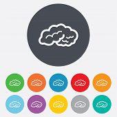 Brain sign icon. Intelligent smart mind.