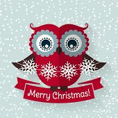 picture of snow owl  - Merry Christmas - JPG