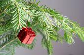 Christmas Tree Red Box Decoration