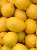 Fruit  Lemons  Yellow  Citron