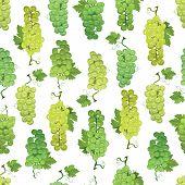 Green grapes vector seamless pattern