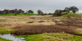 foto of marshlands  - Coalhouse fort Tilbury Essex viewed across marshland - JPG