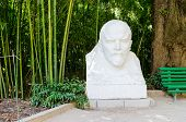 picture of lenin  - Bust of Vladimir Lenin in the Nikitsky botanical garden - JPG