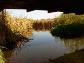 foto of illinois  - This is a view under a foot bridge in the Rock Run County Forest Preserve - JPG
