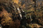 image of bohemian  - The Prachov Rocks - JPG