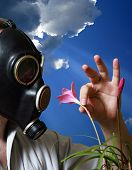 stock photo of gas mask  - The man in a gas mask with flowers - JPG