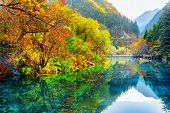 The Five Flower Lake. Autumn Forest Reflected In Water poster