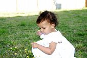 Baby Picking Flowers