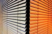 Closeup of two shutters at an office building