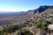Desert landscape from Miller Peak in Arizona towards a valley on the US-Mexican border, favored by s
