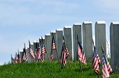 Gravestones decorated with U.S. flags to commemorate Memorial Day at the Arlington National Cemetery poster