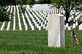 One gravestone with copyspace in front of endless rows of graves at the Arlington National Cemetery