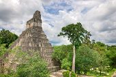 Tikal, Belize