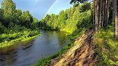 River Among The Taiga. Golden Autumn. Indian Summer. poster