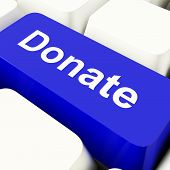 Donate Computer Key In Blue Showing Charity And Fundraising