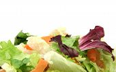 Vegetarian Texture