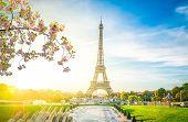 Eiffel Tower Landmark From Trocadero At Sunrise At Spring, Paris, France poster