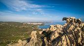 Capo Dorso Palau Sardinia Italy. View of the Bear rock. East of the port of Palau. Costa Smeralda S poster