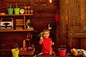 Child Concept. Little Child With Gardening Tools. Cute Child In Garden Shed. Happy Child Gardener. poster