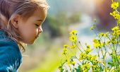 Profile portrait of a sweet little baby enjoying flowers aroma, having fun in spring park, beauty an poster