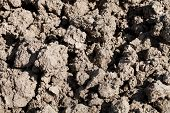 Dirt background texture. Soil prepared for cultivation. poster