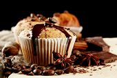 tasty muffin cakes with chocolate, spices and coffee seeds, close up