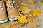 pair of biege leather shoes and yellow leaves on an old wooden floor