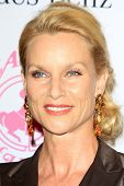 LOS ANGELES - OCT 20:  Nicollette Sheridan arrives at  the 26th Carousel Of Hope Ball at Beverly Hil