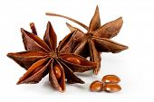 star anise. isolated on a white background