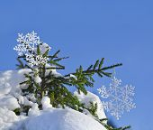 Fir branches in the snowdrift with Christmas snowflake against the blue sky