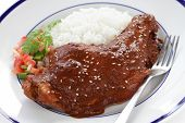 stock photo of mole  - chicken with mole poblano sauce - JPG