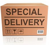 special delivery important shipment of online order from webshop, package sending express shipping