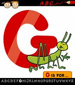 Letter G With Grasshopper Cartoon Illustration