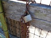 Lock & Chain on a Fence