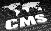 CMS padrão Global do setor no mapa 3D