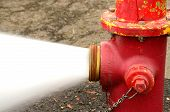 stock photo of butt  - Open 5 inch butt of an industrial fire hydrant being sprayed into a log pod in Creswel Oregon - JPG