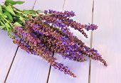 picture of purple sage  - Salvia flowers on purple wooden background - JPG