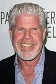 Ron Perlman at the Paley Center for Media 2013 Benefit Gala, 20th Century Fox Studios, Los Angeles, CA 10-16-13