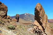 stock photo of canary-islands  - Tenerife Canary Islands Spain  - JPG