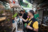 HONG KONG, CHINA - NOVEMBER 11, 2012: Tourists and locals in the bird market Bird Garden. Market is