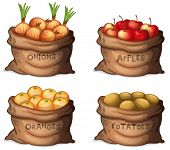 image of edible  - Illustration of the sacks of fruits and crops on a white background - JPG