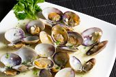 Marinated Clams