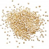 image of quinoa  - quinoa seed grain close up macro shot isolated on a white background - JPG