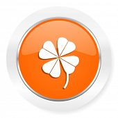 four-leaf clover orange computer icon