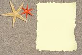 Starfish With Blank Paper For A List, Menu Or Text
