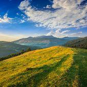 Pair Of Haystacks And Trees At Mountain