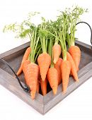 Fresh carrot with leaves on wooden tray isolated on white